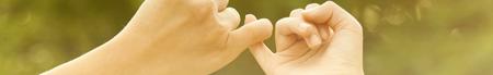 lynx_promise